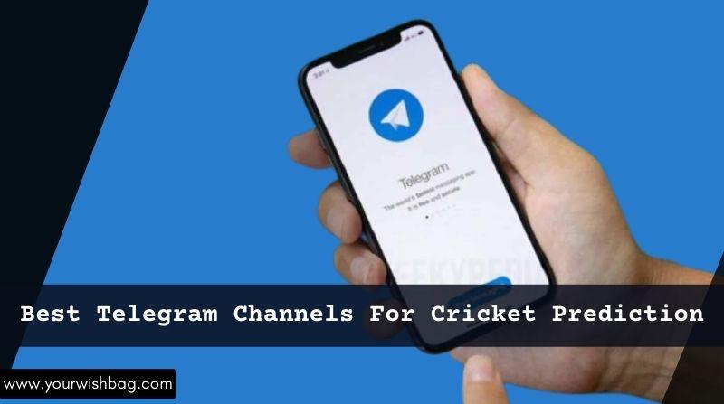 Best Telegram Channels For Cricket Prediction
