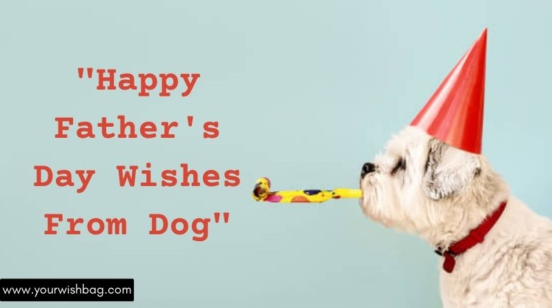 Happy Father's Day Wishes From Dog